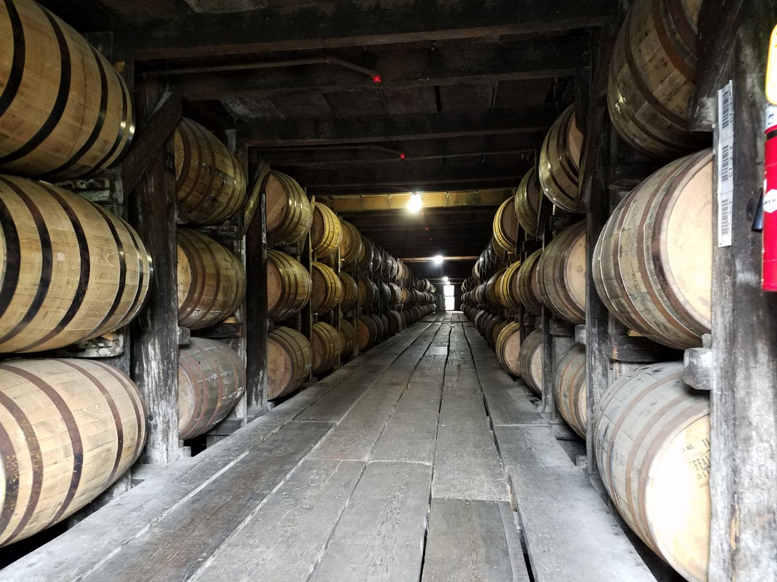 University of West Florida graduate on the Bourbon Trail